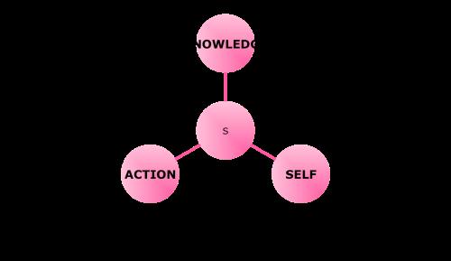 curriculum schema